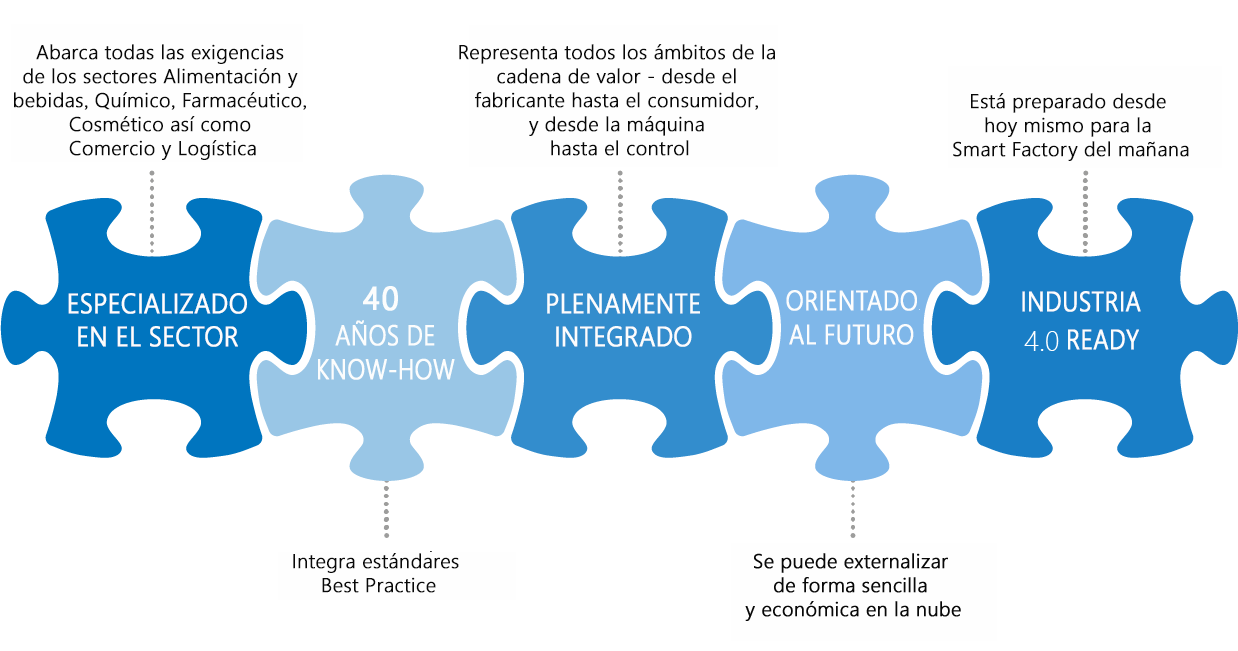 ES_Softwaresolution_puzzel_benefits.png